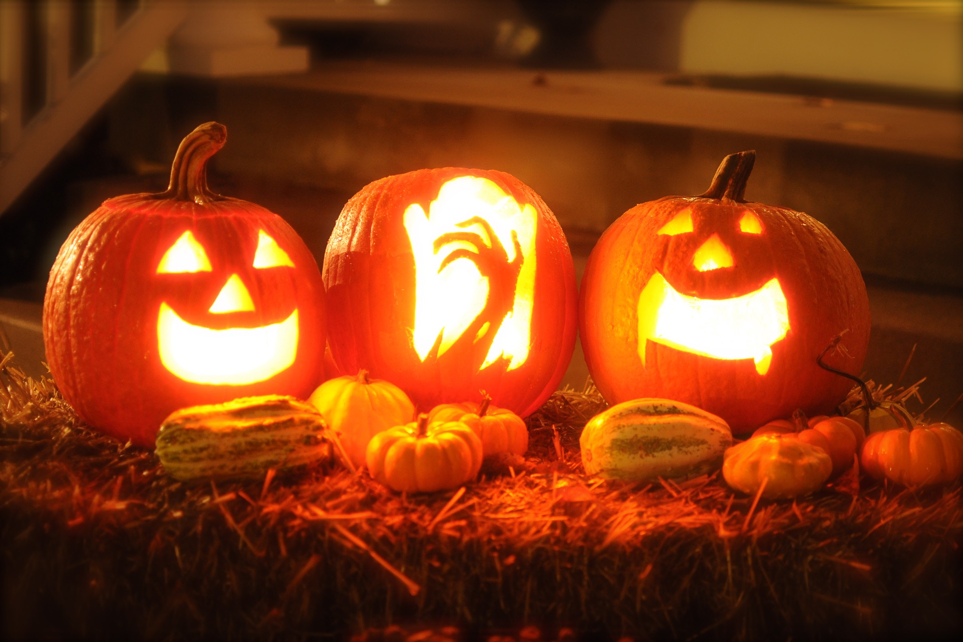 Sign up to create a pumpkin trail for Halloween