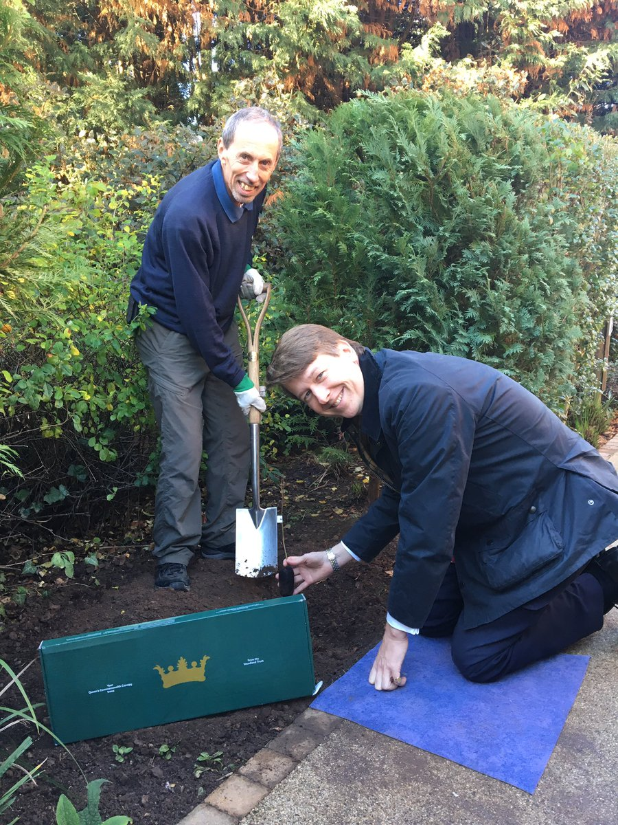 Tree scheme helps lay down roots for future
